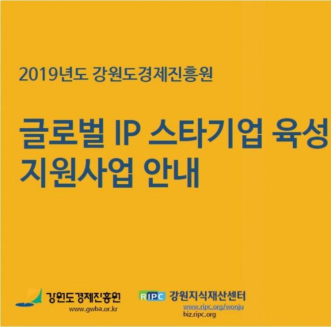 2019년 사업설명회 자료_글로벌 IP스타기업 육성 지원사업.jpg